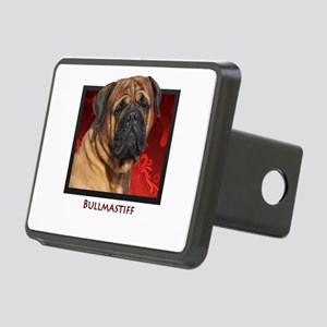 11-Untitled-2 Rectangular Hitch Cover