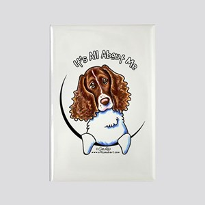 Springer Spaniel IAAM Rectangle Magnet