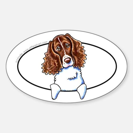 Springer Spaniel Peeking Bumper Sticker (Oval)
