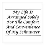 Schnauzer Convenience Square Car Magnet 3