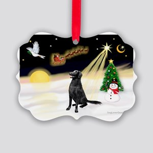 Night Flight/Fl Coat Retrieve Picture Ornament