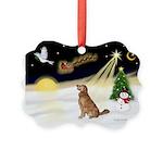 Night Flight/Golden 12 Picture Ornament