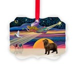 XmasStar/ Newfie Picture Ornament