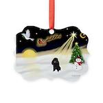 Night Flight/Poodle (min) Picture Ornament