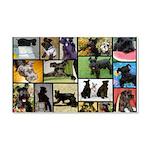 Black Schnauzer Collage 20x12 Wall Decal