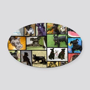 Black Schnauzer Collage Oval Car Magnet