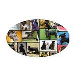 Black Schnauzer Collage Oval Car Magnet