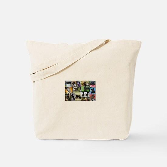 Black Schnauzer Collage Tote Bag
