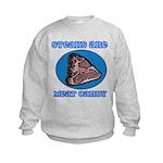 Steaks are Meat Candy Kids Sweatshirt