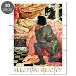 Sleeping Beauty Puzzle