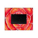 Red-Orange Rose Picture Frame