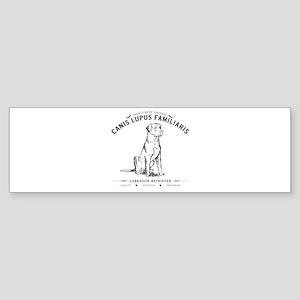 Vintage Labrador Sticker (Bumper 10 pk)