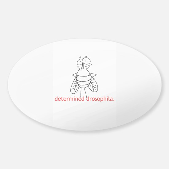 Determined Drosophila Sticker (Oval)