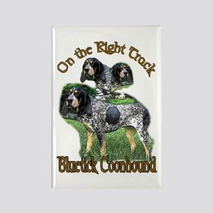 Bluetick Coonhound Gifts Rectangle Magnet (10 pack