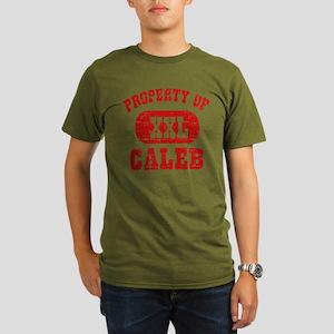db4f05eeb0ddf Caleb Men's Organic Classic T-Shirts - CafePress