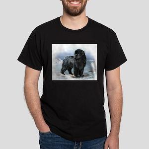 Newfoundland 10x T-Shirt