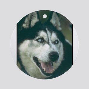 Siberian Husky Photo Ornament (Round)