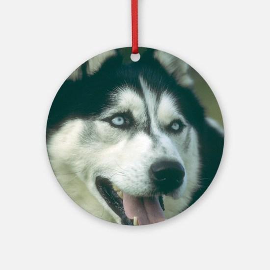 Siberian Husky Photo Ornament (Round)