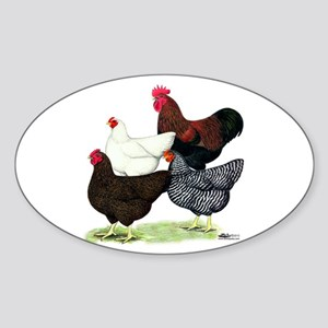 Plymouth Rock Chickens Sticker (Oval)