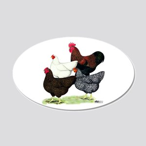 Plymouth Rock Chickens 20x12 Oval Wall Decal