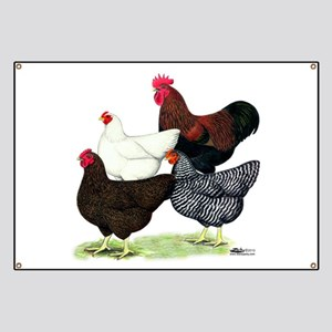 Plymouth Rock Chickens Banner