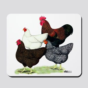 Plymouth Rock Chickens Mousepad