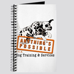 Anything's Possible LLC Journal