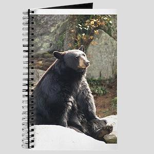 Black Bear Sitting Journal