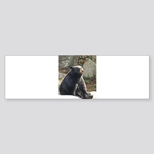 Black Bear Sitting Sticker (Bumper)