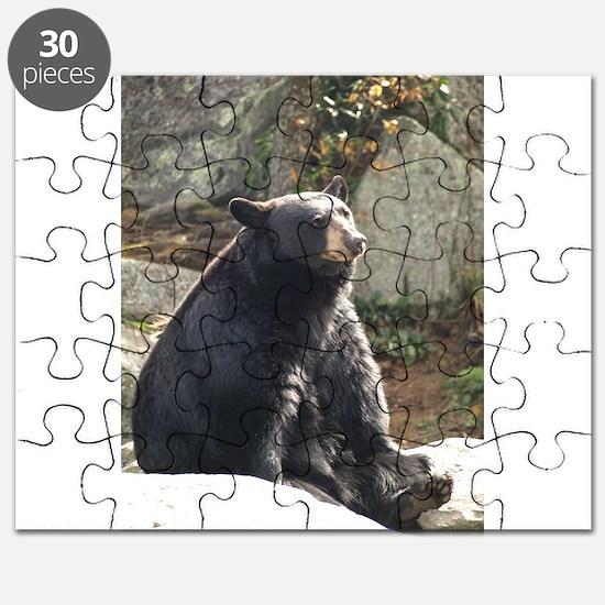 Black Bear Sitting Puzzle