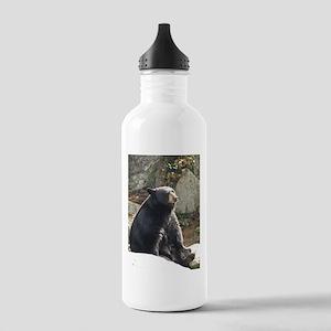 Black Bear Sitting Stainless Water Bottle 1.0L