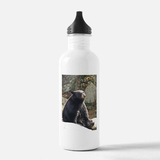 Black Bear Sitting Water Bottle