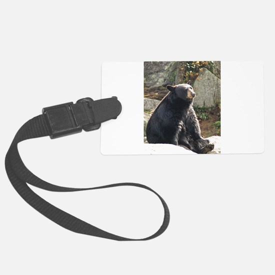 Black Bear Sitting Luggage Tag