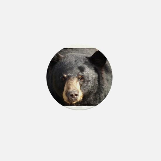 Black Bear Face Mini Button