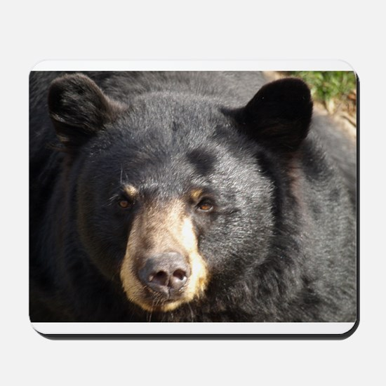 Black Bear Face Mousepad