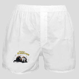 Bernese Mountain Dog Hairifying Boxer Shorts
