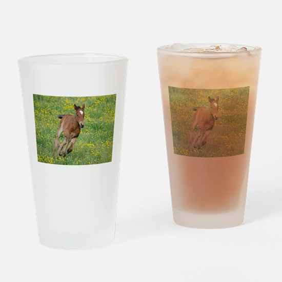 Galloping Foal Drinking Glass