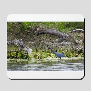 Little Blue Heron Mousepad