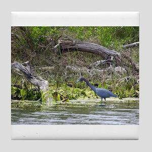 Little Blue Heron Tile Coaster