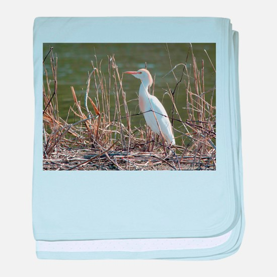 Cattle Egret baby blanket