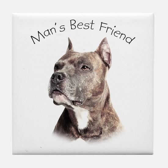 Man's Best Friend Tile Coaster