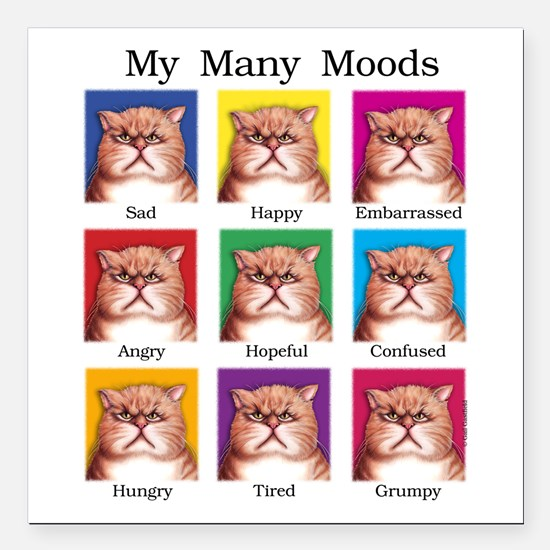 """Many Moods Square Car Magnet 3"""" x 3"""""""