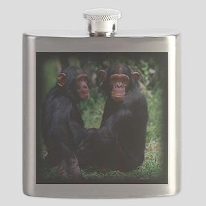 Chimpanzee Pair Flask