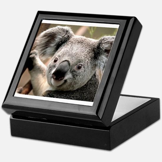 koala Keepsake Box
