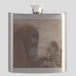 Flask-Orangutans