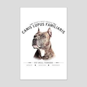Man's Best Friend Mini Poster Print