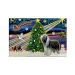 Xmas Magic & Beardie Rectangle Magnet (10 pack)