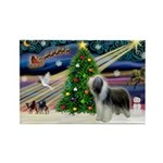 Xmas Magic & Beardie Rectangle Magnet (10 pack)