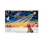 XmasSunrise/Bloodhound Rectangle Magnet (10 pack)