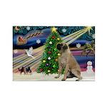 XmasMagic/Bull Mastiff Rectangle Magnet (10 pack)
